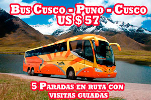 Bus Cusco Puno Cusco